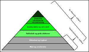 Behovspyramide2