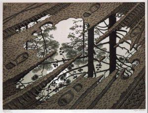 skogsperspektiv